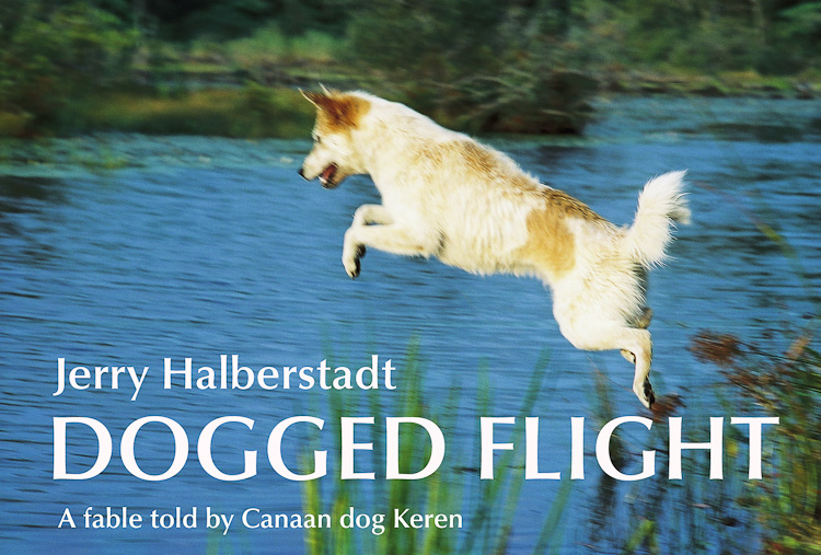 cover of Dogged Flight